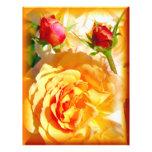 Love_ color de rosa tarjetas informativas