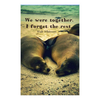 Love couple quote sea lions on the beach stationery