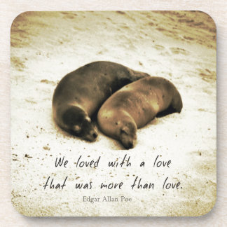 Love couple romantic quote sea lions on the beach drink coaster