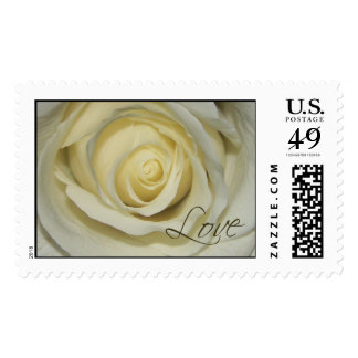 Love Cream Rose Postage