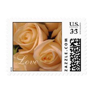 Love Cream Roses Postage Stamp stamp