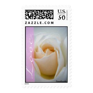 Love Cream White Rose Postage
