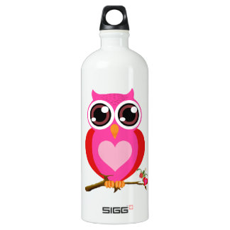 Love Cute Owls & Hearts Aluminum Water Bottle