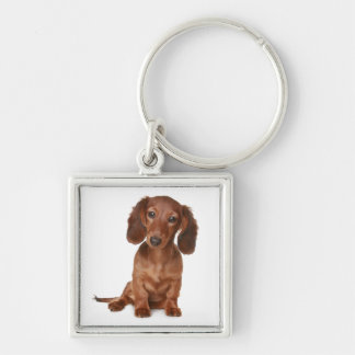 Love Dachshund Puppy Dog Key Chain