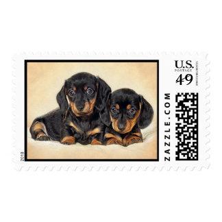 Love Dachshund Puppy Dog Postage Stamps