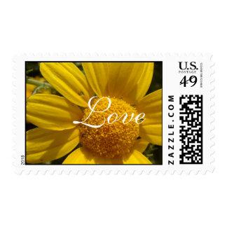 Love Daisy Postage