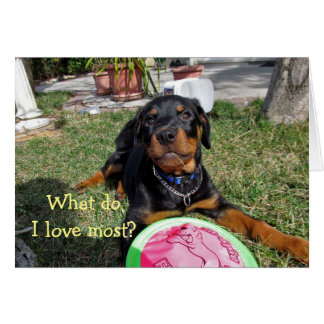 Love Decision Rottweiler Puppy Card