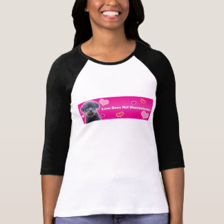 Love Does Not Discriminate Raglan Shirt - Black