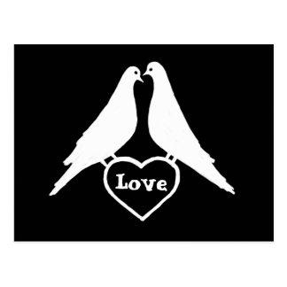 Love Doves Postcard
