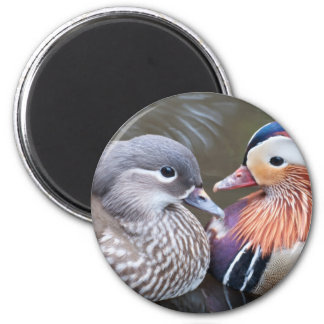 Love Ducks Magnet