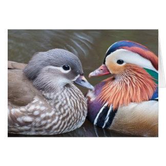 'Love Ducks' Notecard Greeting Card