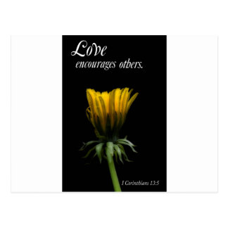 love encourages others postcard