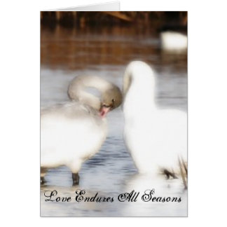 Love Endures All Seasons Sympathy Card