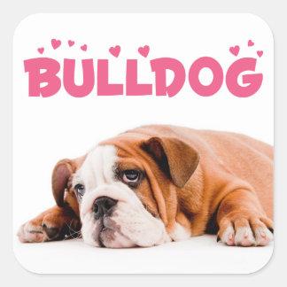 Love English Bulldog Puppy Dog Pink Hearts Sticker
