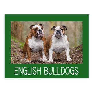 Love English Bulldog Puppy Dog Post Card