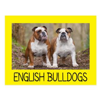 Love English Bulldog Puppy Dog Yellow Post Card