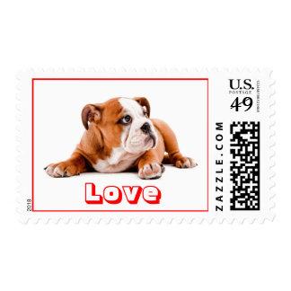 Love English Bulldog US Postage Stamps