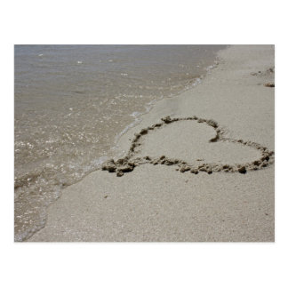 Love etched in sand postcard