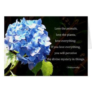 Love everything greeting card