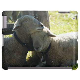 Love Ewe Sheep