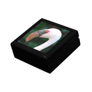 Love Flamingos Gift Box