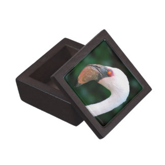 Love Flamingos Premium Gift Box