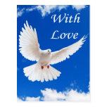 Love flies in postcard