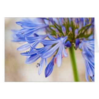Love Flower Greeting Card
