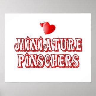 Love for Miniature Pinschers Poster