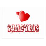 Love for Samoyeds Postcard