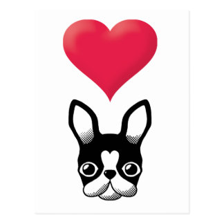 Love French Bulldog/Boston Terrier Postcard