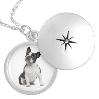 Love French Bulldog Puppy Dog Pendent Necklace