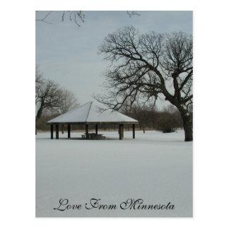 Love From Minnesota Postcard