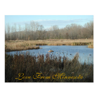 Love From Minnesota Postcard by Janz