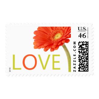 Love Gerberas Postage