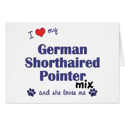 Love German Shorthaired Pointer Mix (Female Dog) Card by muttybuddy