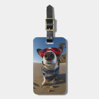 Love Goggles Luggage Tag