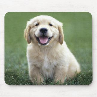 Love Golden Retriever Puppy Dog Green Grass Mouse Pad