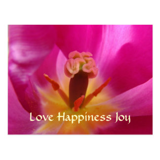 Love Happiness Joy Post Card Valentine's Day cards