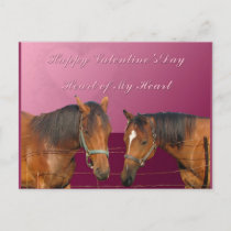 Love & Happy Valentines Horses With Hearts Pink & Holiday Postcard