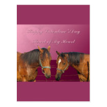 Love & Happy Valentines Horses With Hearts Pink & Postcard