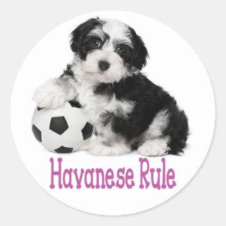 Love Havanese Puppy Dog Stickers Seal