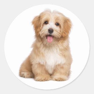 Love Havanese Tan Puppy Dog Hello Classic Round Sticker