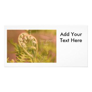 Love Heart Ferns Photo Card
