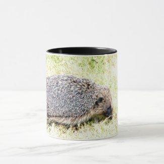 Love Hedgehogs Mug