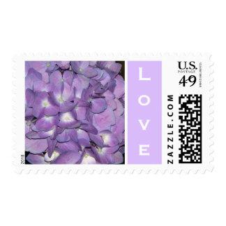 Love Hydrangea Postage Stamp