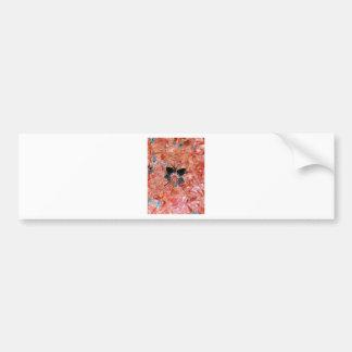 love-in-a-mist car bumper sticker