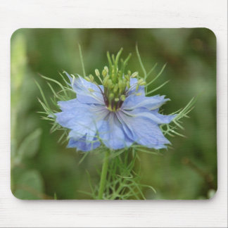 Love in a Mist Mouse Pad