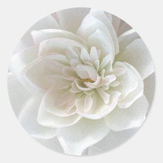 Love in Blossom_ Classic Round Sticker