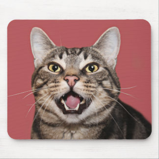 Love in cats eyes mouse pad
